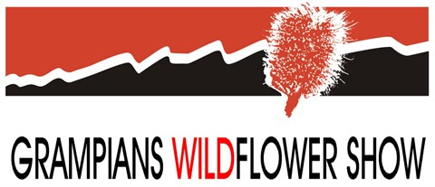 1 Wildflower Show Art Logo 08 300dpi.jpg